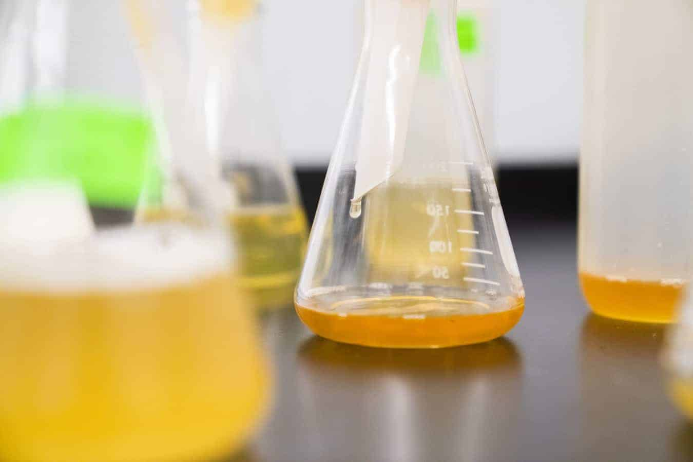 A clear erlenmeyer flask with orange liquid in it