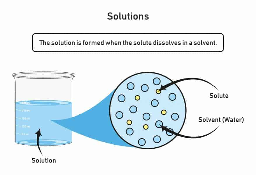 A solution is formed when a solute dissolves in a solvent